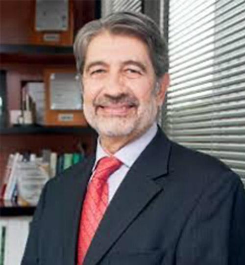 Luis Foncerrada - Presidente